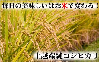 上越コシヒカリ通販サイト【米選】